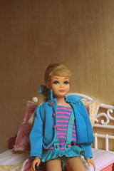 Skipper (Justina Maria Louisa) Tags: diy plywood multiplex barbiehouse barbiehuis