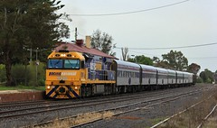 9310 is the first 93 Class to run the Overland instead of the normal NR Class seen here at Horsham (bukk05) Tags: melbourne adelaide passenger horsham pn overland 9310 pacificnational wimmera railpage:livery=23 rpau93class railpage:class=137 rpau93class9310 railpage:loco=9310