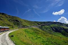 The Train Climb Through the Alpine Grasslands (jerryjcwu) Tags: travel summer mountains alps landscape switzerland scenery europe gornergrat nikkor d600 alpinegrassland afsnikkor28mmf18g