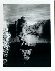 MiltonCameraWalk-Polaroid04 (McFarlaneImaging) Tags: blackandwhite bw ontario canada film analog polaroid photographer doubleexposure land instant fujifilm milton 440 hollywooddog fp3000b