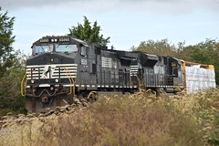 NS Train in Harrington, DE (JaiJad) Tags: railroad lines train power ns short deleware skyler harrington freighttrain traincars norfolksouthern shor freightyard hoppercar pulpwood