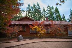 (Digital_trance) Tags: autumn fall landscape maple fallcolors taiwan autumncolors     taroko       tarokonationalpark            fushoushan   14            2013