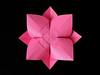 Fiore Bombato, Retro - Curved Flower, Back