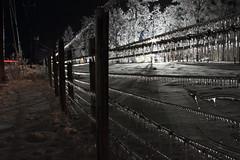 Shine Like a Diamond (Tom McAfee) Tags: county nightphotography trees ohio brown snow ice canon fence shine diamond pasture 7d poles