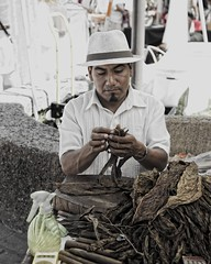 the Mercado (miguel-jose) Tags: mexico jalisco cigar puertovallarta handmadecigar