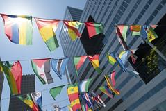 Bunting Flags | Signarama