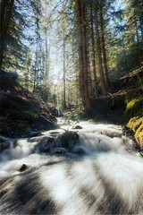 Dolomite Creek (Bo47) Tags: trees italy sun nature water creek forest europe lensflare hdr highdynamicrange 2013 thedolomites nikkor1424mmf28 nikond800