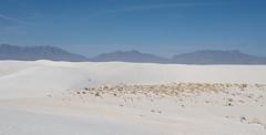 Dune View - White Sands National Monument - Otero County - New Mexico - 21 March 2014 (goatlockerguns) Tags: county new usa white monument america mexico sand view desert unitedstatesofamerica dune center national sands visitor otero