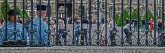 Watchers - Paris