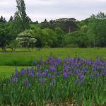 Chaumont-sur-Loire (Loir-et-Cher) thumbnail