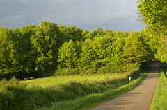 Little road at the begining of the golden hour