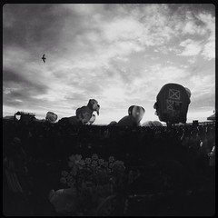 2015-007 (frborj) Tags: hotair philippines balloon frborj hipstamatic hipstography