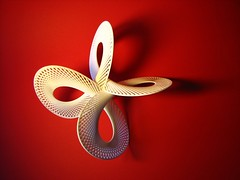 Hi-res pictures of 3D printed objects (fdecomite) Tags: print 3d math imaginary shapeways