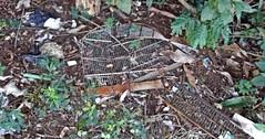 cage (Luishss) Tags: natureza cage destruio gaiola