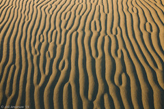Sand ripples (Atlapix) Tags: newzealand nature sand pattern southisland ripples farewellspit ripplemarks sandripples