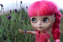 248/366 Pretty lavender is growing (omgdolls) Tags: pink blythe blythedoll blythe365 pureneemobody dollypunk21 adelaideskye