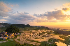 Terrace of Naorao village (Matt Leung.) Tags: china sunset reflection zeiss landscape guizhou guiyang gnd distagon2128zf