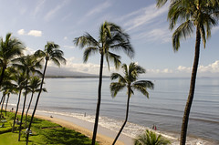 Maalaea Beach (rschnaible) Tags: ocean usa seascape beach water palms landscape hawaii us pacific outdoor sightseeing maui tropical tropics kihei maalaea