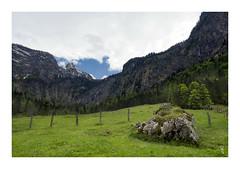 P5170308fb (Ja) Tags: nature germany landscape spring olympus zuiko knigssee krajina 1240pro em5ii