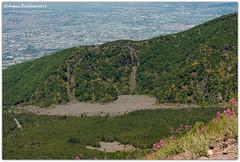 DSC_0353 (tonydg57) Tags: del torre campania napoli vesuvio vulcano pompei ercolano greco