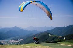 Go, Go, Go! (MDSalary) Tags: fly sunny korea paragliding danyang d7000