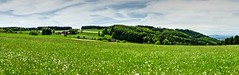 Black Forest landscape north-west of Freiburg (MJWoerner49) Tags: landscape meadow blackforest mountainmeadow freiamt sexau hhnersedel middleblackforest