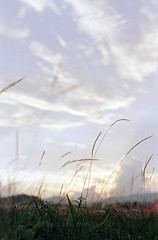 Agfa Vista Plus 400 (leonlee28) Tags: life camera blue trees sunset sky orange cloud sun white mountains color green film nature grass yellow analog landscape scenery flickr outdoor hill ishootfilm epson spotmatic filmcamera agfa analogphotography 50mmf14 asa400 naturallighting asahipentax antiquecamera filmphotography colorfilm filmscanner analogcamera filmslr spotmaticii filmisnotdead agfafilm asa400film asahicamera smctakumar50mmf14 asahilens agfacolorfilm leonlee28 leonlee vistaplus400 agfavistaplus400 epsonfilmscanner ibuyfilm ibuyfilmnotmegapixels asahipentaxfilmcamera asahipentaxsportmaticllsp
