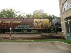 09-01-10 (16) (This Guy...) Tags: road railroad car train graffiti box graf rail rr traincar boxcar graff 2010