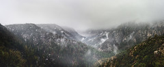 Canyon Brume (armand.gerstenberger) Tags: ifttt 500px brume fog mist cloud snow snowstorm arizona southwest us united states usa southwestern mountainscape mountain armand gerstenberger hiking travel weather