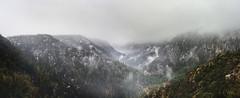 Canyon Brume (armand.gerstenberger) Tags: ifttt 500px brume fog mist cloud snow snowstorm arizona southwest us united states usa southwestern mountainscape mountain armand gerstenberger hiking travel weather