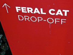 Feral Cat Drop-Off, San Francisco, CA (Robby Virus) Tags: sanfrancisco california wild animals sign cat kitty signage kitties shelter feral dropoff