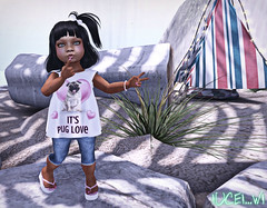 65LRPugLove (Coco Boreoe ~ Thnx 4 All The ) Tags: family childhood fashion kids blog child mesh events families blogs sl secondlife blogging toddlers due poses trompeloeil virtualworld littlerainbows toddleedoo