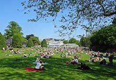 Sunshine (Bricheno) Tags: park people scotland glasgow candid escocia botanicgarden westend szkocja botanicgardens kibble schottland scozia cosse  esccia   bricheno scoia