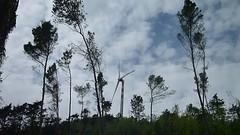 . (Angela Malavenda) Tags: landscape outside video spring wind around turbine windturbine ending discovering