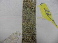 finches birdfeeder (clubsummerlands) Tags: holiday birds animal for bach rights hollywood movies escher bahhumbug aspca rango rango2 gpdel