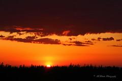 Sunset from Devil's Garden (trifeman) Tags: june canon spring sunday eldorado sierra 7d sierranevada amador springtime eldoradocounty 2016 usfs hwy88 carsonpass eldoradonationalforest enf canon7dmarkii