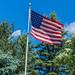 166366 - Flag Day