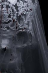 IMG_5093 (m.acqualeni) Tags: sculpture metal dark de dead death skull noir mort gothic goth manuel morbid alain gothique mtal fond tete tte morbide belino acqualeni