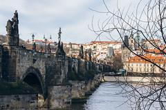 Charles Bridge (Rebecca Suzanna) Tags: city bridge winter sun streets art history architecture river photography europe prague library wanderlust explore czechrepublic charlesbridge strahov citytrip