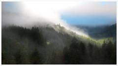 Low Cloud 1 (joseph_donnelly) Tags: trees cloud mountain berg germany landscape bayern deutschland bavaria village low wolken landschaft