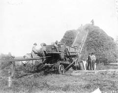 P-1-A-017 (neenahhistoricalsociety) Tags: people farmscenes jpj
