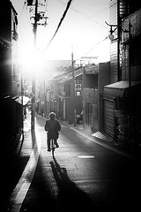 Trou d'pingle (www.danbouteiller.com) Tags: japan japon japanese japonais people bike velo sun sunlight sunset kyoto ville urban city photoderue photo de rue street streetscene streetlife streets streetshot monochrome black white noir blanc nb bw noiretblanc noirblanc blackandwhite blackwhite canon canon5d eos 5dmk2 5d 50mm 50mm14 5d2 5dm2