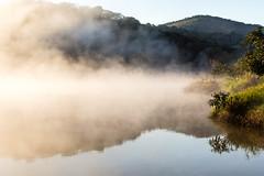Blue mirror (_Moliveira) Tags: landscape fog foggy haze mist morning sunrise 35mm 18g dx lake d5200