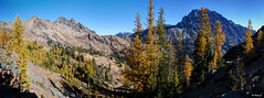 Ingalls Pass Panorama (keithc1234) Tags: mountain mountains landscape fallcolors larches ingallspeak mtstuart headlightbasin jackridge alpinelarches
