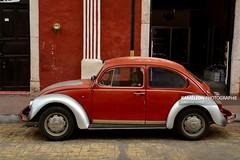 Coccinelle rouge dans les rues de Valladolid (Kamlon Photographie) Tags: voyage travel explore