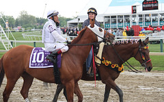 Preakness Day 2016 (first_dude) Tags: maryland preakness horseracing thoroughbred pimlico