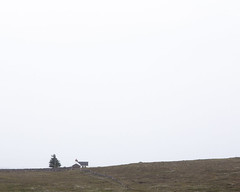 House on the Moor (AEChown) Tags: house scotland space negativespace negative moor moorland assynt crofthouse