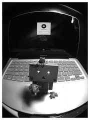 Fisheye (Colleen Ladrido ) Tags: blackandwhite apple photography fisheye frogs iphone iphonephotography danboard uploaded:by=flickrmobile flickriosapp:filter=panda pandafilter