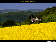 The little house on the hill (episa) Tags: house nature yellow forest countryside spring hill valley czechrepublic teleconverter colzafield leicaapoelmarit180mmf28 nikond800e nikkortc16a