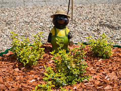 Little gardener (The Adventurous Eye) Tags: bear statue funny little mascot gardener